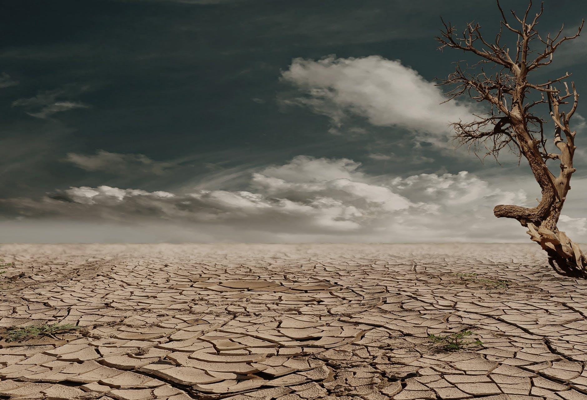 Analiza zakonodavnog okvira klimatskih promena u Srbiji
